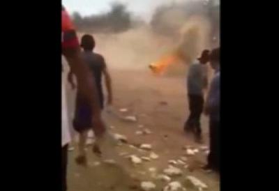 Horreur: ils attachent un chien à des feux d'artifice avant de les allumer