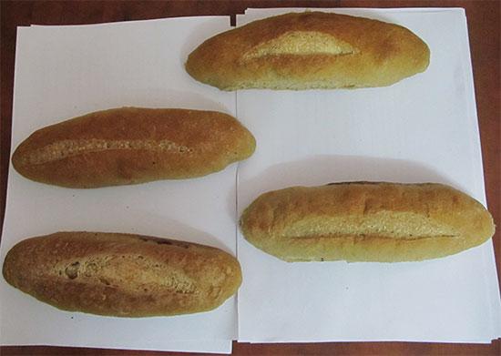 Thiès : lancement d'un projet de pain à base de céréales locales