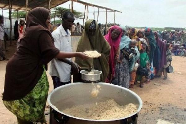KEDOUGOU Mobilisation sociale contre la malnutrition : Le centre de Toumania reverdit