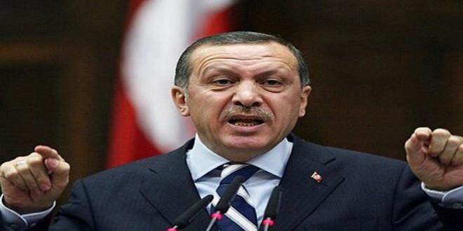 Erdogan porte plainte contre une opposante pour «insulte au président»