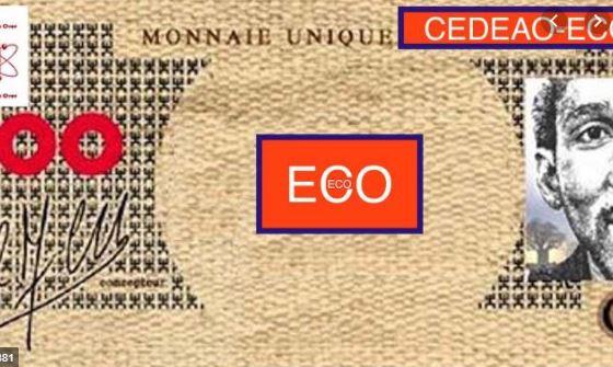 CEDEAO : Le lancement de la monnaie unique Eco une nouvelle fois repoussé