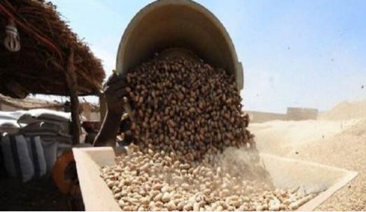 Vol à main armée à Kaolack : L'usine d'arachide des Chinois attaquée