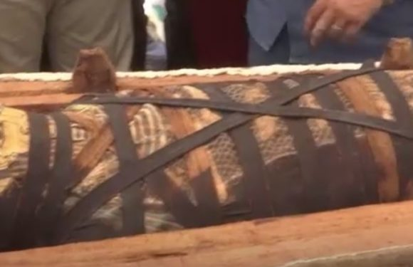 Découverte archéologique majeure en Egypte: 59 sarcophages sortis de terre