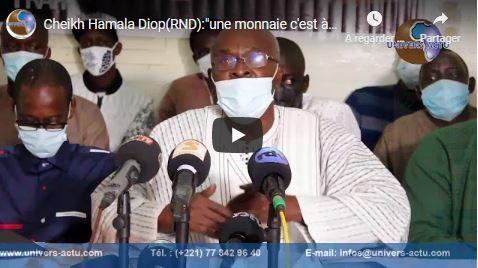 Cheikh Hamala Diop(RND):»une monnaie c'est à long terme qu'elle s'apprecie»